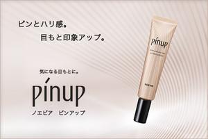 Pinup_2017